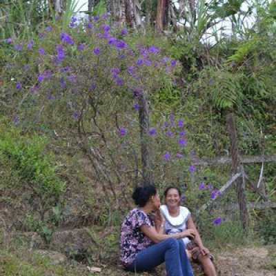 Women+talking+under+flowering+tree